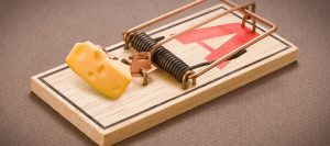 Don't fall into the Website Maintenance Trap